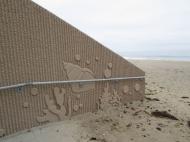 tn  Westlake Village, CA Custom pattern fractured rib with sea shells